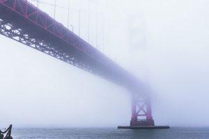 ミルクのように濃い霧